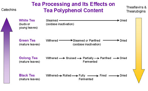 teaprocessing