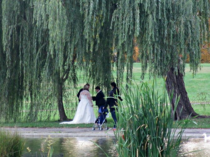 I walked right by this intimate wedding in a park just off the National Mall, such a romantic setting!